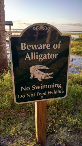 Beware of alligator sign